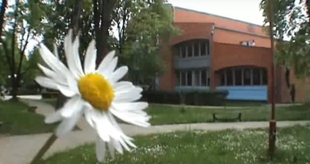 Александровац: Народна странка захтева хитно смењивање директора средње школе, дао професорки српског да предаје деци физику