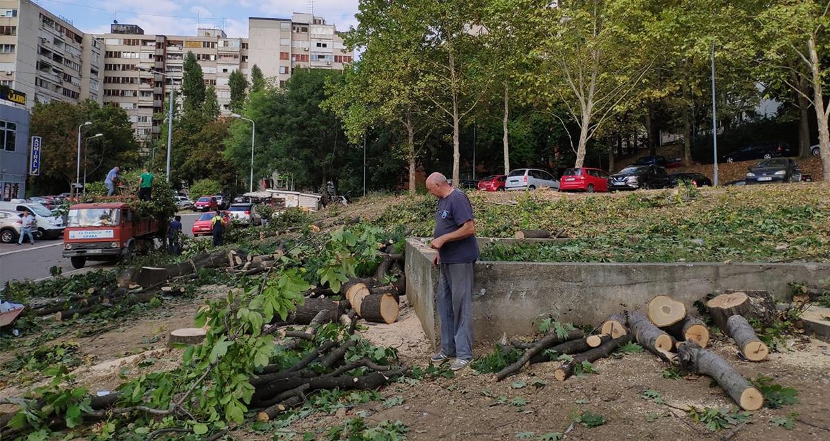 Народна странка Вождовац: Да ли је губитак свих зелених површина будућност Београда?