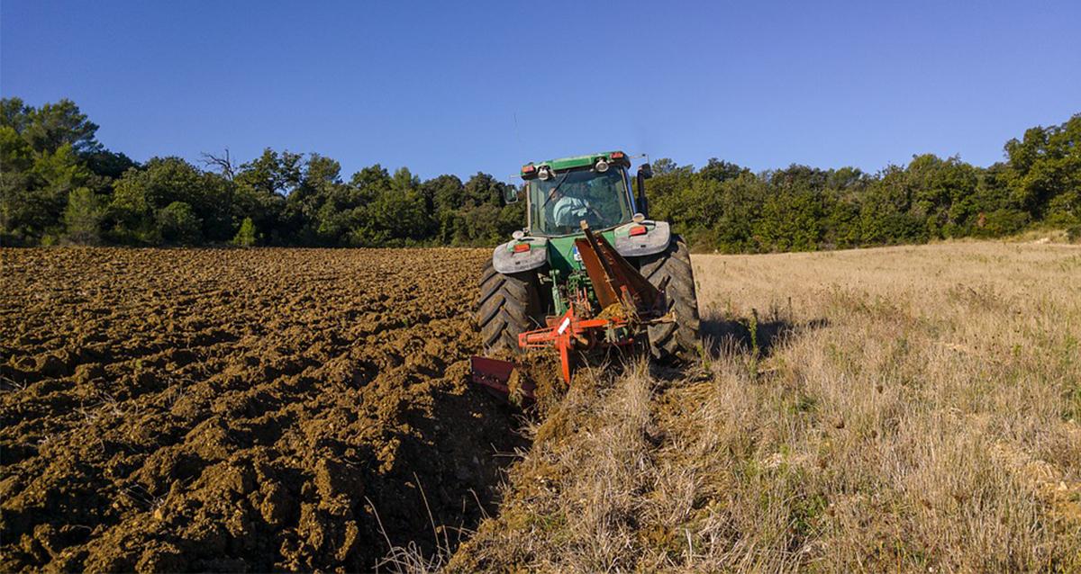 Народна странка Сомбор: Занемарена пољопривреда у Војводини