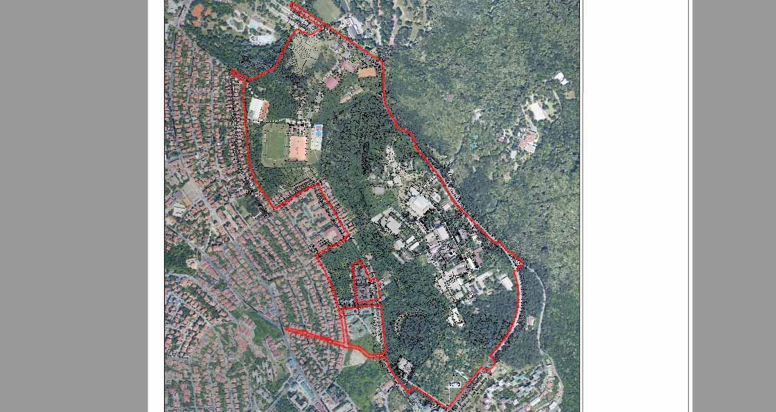 Народна странка Чукарица: Власт намерава сечу шуме у Кошутњаку, угрожена плућа Београда
