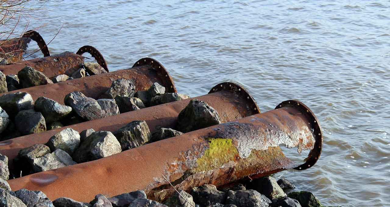 Народна странка: Дунав се претвара у канализацију, инвеститори убијају живи свет